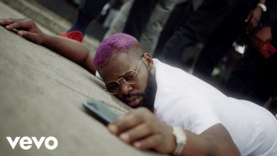 Falz Johnny video 390x220 - Falz - Johnny (Official Video)