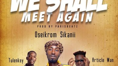 Oseikrom sikanii 390x220 - Oseikrom Sikanii - We Shall Meet Again ft Tulenkey & Article Wan