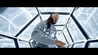 Flavour Doings 390x220 - Flavour ft Phyno - Doings (Official Video)