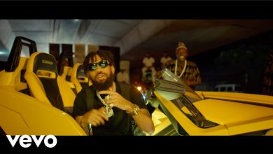 Phyno Money video 390x220 - Phyno & Peruzzi - Money (Official Video)