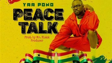 Yaa Pono peace 390x220 - Yaa Pono - Peace Talk (Prod. by Mr. Blakk)