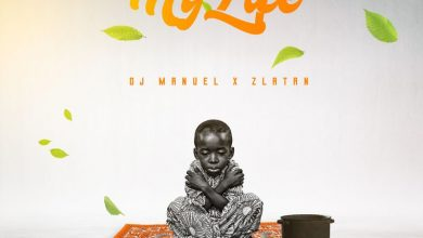 DJ Manuel My Life cover art 390x220 - DJ Manuel - My Life ft Zlatan