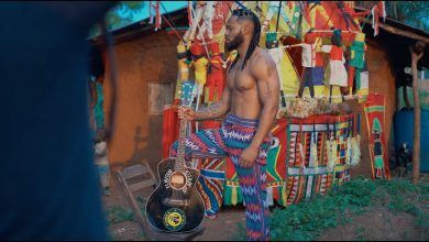 Flavour video 390x220 - Flavour ft. Biggie Igba - Umu Igbo (Official Video)