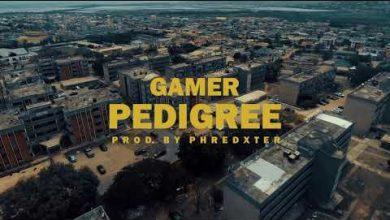 Gamer Pedigree video 390x220 - Gamer - Pedigree (Official Video)