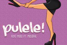 Kofi Pulele cover art 220x150 - Kofi Mole - Pulele ft. Medikal