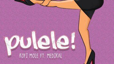 Kofi Pulele cover art 390x220 - Kofi Mole - Pulele ft. Medikal