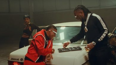 Wizkid burna ginger video 390x220 - WizKid - Ginger ft. Burna Boy (Official Video)