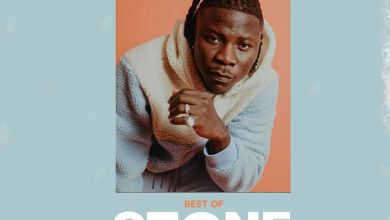 best of stonebwoy dj paa 1 390x220 - DJ Paak - Best of Stonebwoy (Mixtape)
