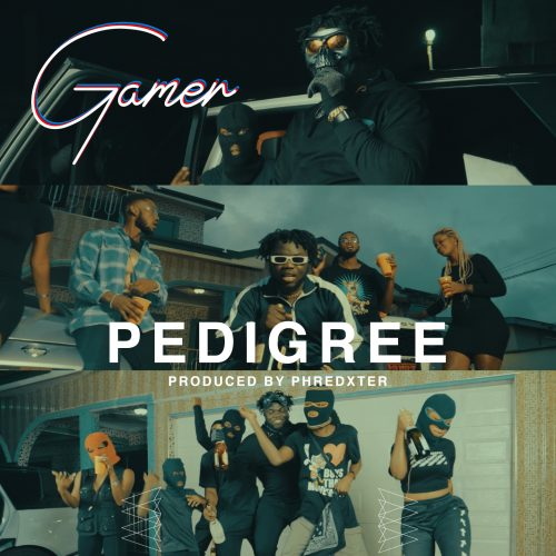 image1 12 500x500 - Gamer - Pedigree (Prod. by Phredxter)