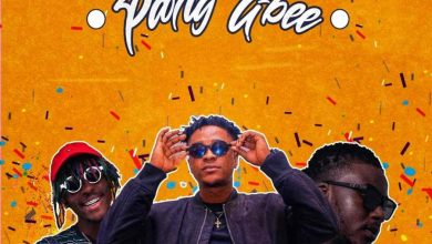 krymi party gbee 390x220 - Krymi- Party Gbee ft. Kofi Mole & King Maaga