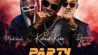 kwaw kese party rocker 390x220 - Kwaw Kese - Party Rocker ft. Medikal & Dammy Krane